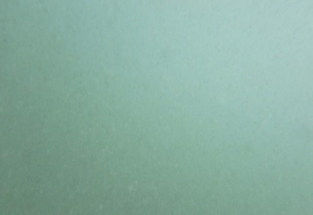 バリ島クタビーチの海中