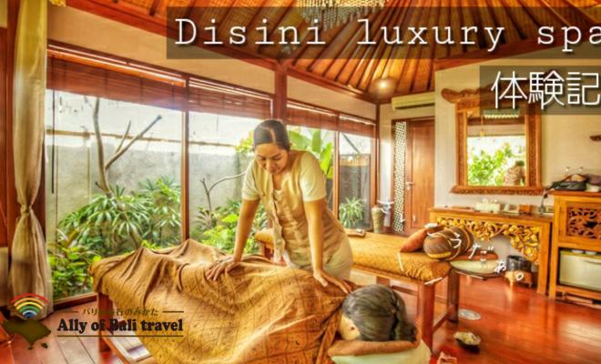 バリ島スミニャックエリアにあるディシニスパのメイン画像